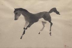 paard-zonder-ruiter-2003-kopie-1